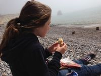 Isle of Wight Freshwater Bay picnic