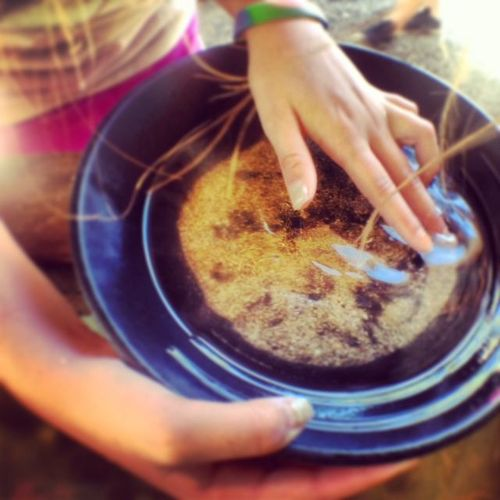 Panning for gold - rocks and sand